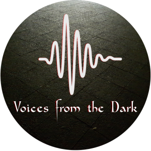 Voices from the Dark Logo sound wave design
