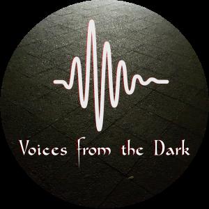 Voices from the Dark Logo sound wave design